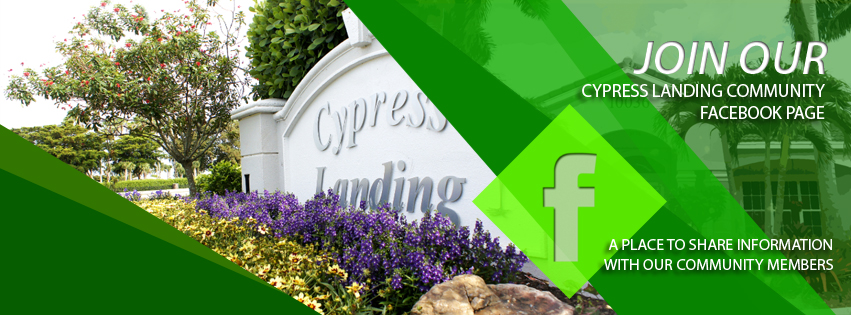 Cypress Landing Facebook Cover