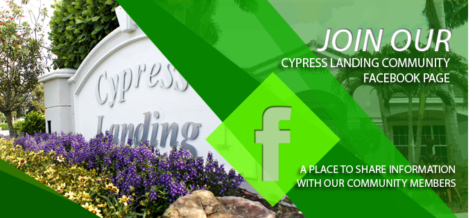 Cypress Landing- Facebook Cover